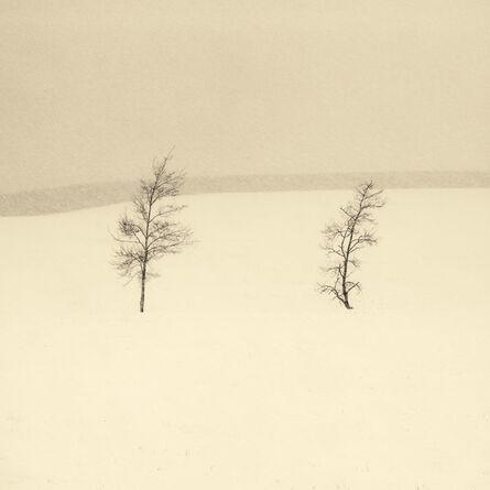 Peter Dusek, 'Two Trees', 2014