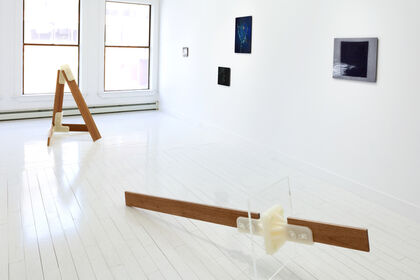 Kate Greene and Bill Albertini: Exceptional Objects