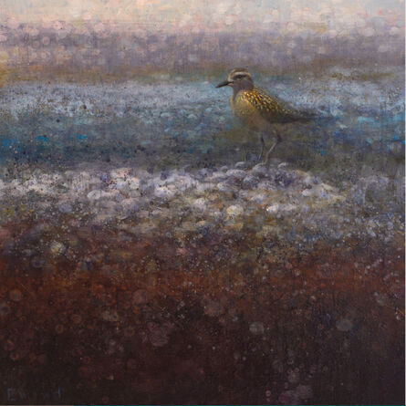 Ewoud De Groot, 'Golden Plover'