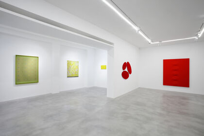 IN THE MATTER OF COLOR. Natale Addamiano, Alberto Biasi, Pino Pinelli, Turi Simeti