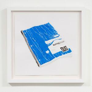 Luke Butler, 'Blue Notebook', 2014