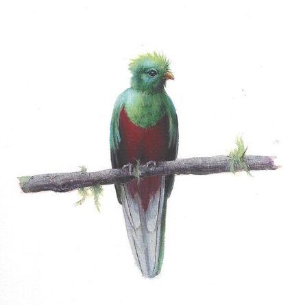 Dina Brodsky, 'Quetzal', 2018