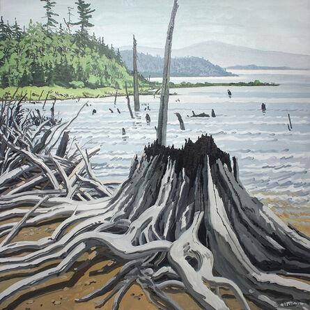Neil G. Welliver, 'Flotsam Allagash', 1988