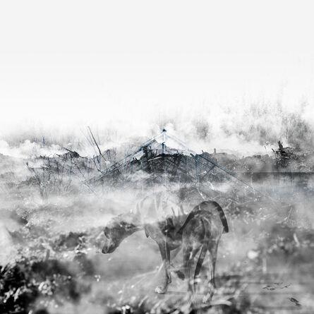 Steinar Christensen, 'Kerberos Present I', 2015