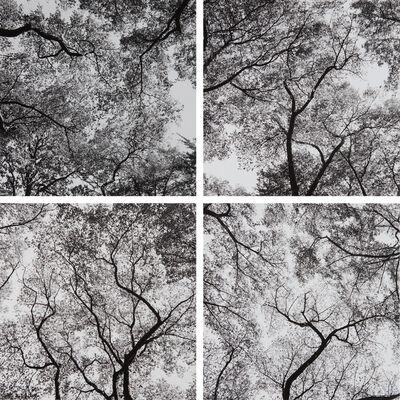 Harry Callahan, 'Ansley Park, Atlanta', 1991-1992