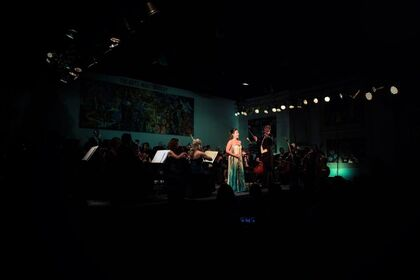 Orchestra In Art: A Night of Musicals