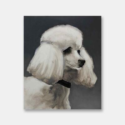 Tomas Harker, 'Poodle', 2019