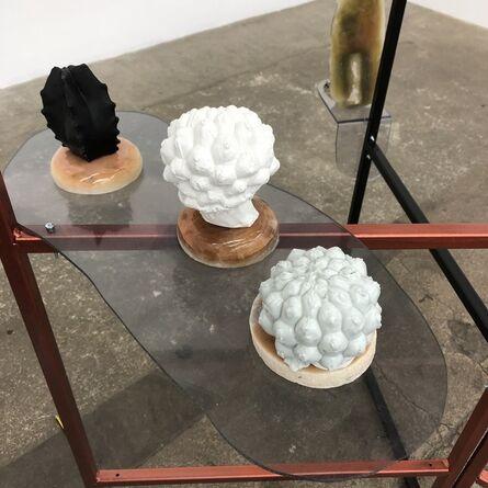 Lisa Kottkamp, 'Home Grown Cactus V', 2020