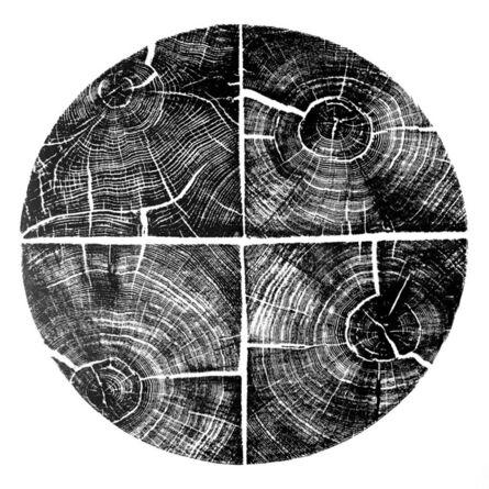 Andre Mirzaian, 'Cercle de Quatre Carré de Chêne', 2017