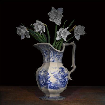 T.M. Glass, 'Narcissus in a Staffordshire Pitcher', 2017