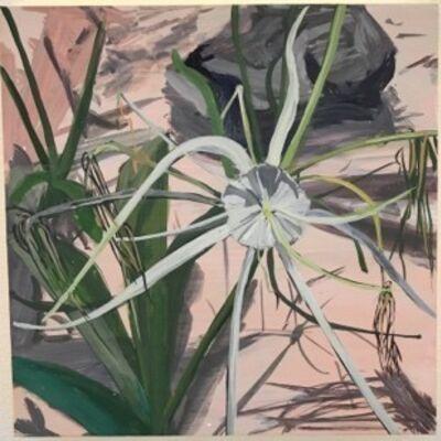 Erika Duque, 'Flor Blanca: Gran Cenote', 2017