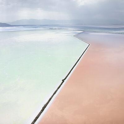 David Burdeny, 'Photosynthetic'