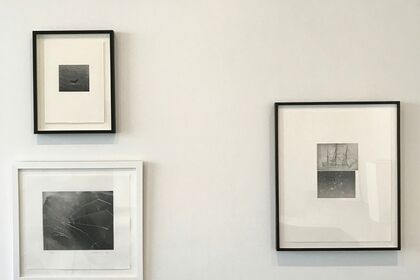 Vija Celmins and Brice Marden - Prints