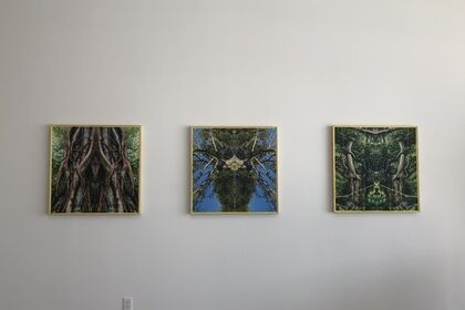 Last Universal Common Ancestor  - A Solo Exhibition - Khotan Fernandez