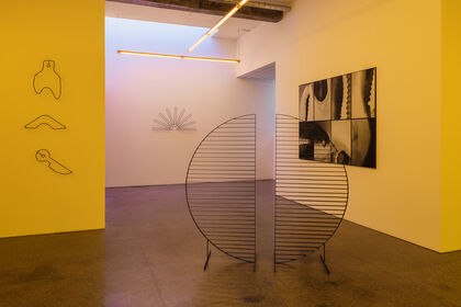 Diana Policarpo: Overlay