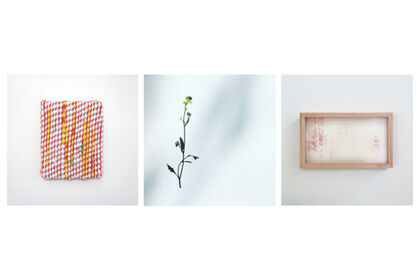 Gallery Pictor Selected Artists Exhibition