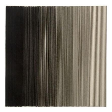 Georgina Bringas, 'Desarrollo Vertical ', 2007