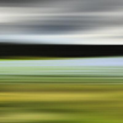 Bonnie Edelman, 'Blue Grass of Sweden', 2014