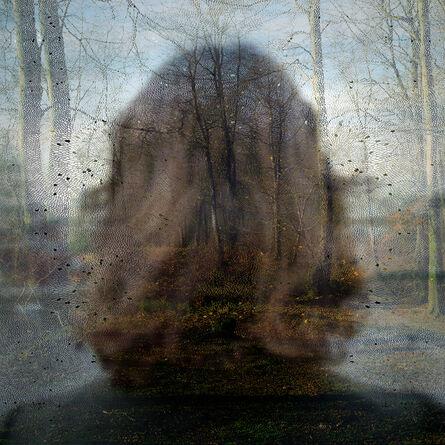 Helen Sear, 'Inside the View, No. 10', 2005