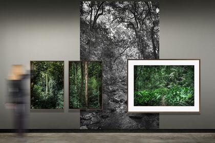 In Paradisum photographs by Daniel Mansur