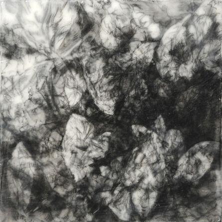 Robin Cole, 'Traces V', 2014