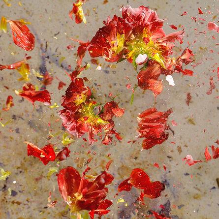 Sharon Neel-Bagley, 'Boiling Crash Number 5', 2015