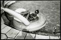 Jean Pigozzi's Photographs Captured Celebrities' Private Lives in the '80s and '90s