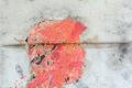 Using Repurposed Materials, Bernardo Pacquing's Paintings Are Experiments in Regeneration