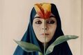 Noted Filmmakers Shirin Neshat and Abbas Kiarostami Grapple with Iranian Identity in Their Still Photography
