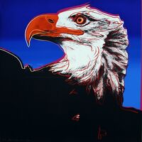 Andy Warhol, 'Bald Eagle', 1983