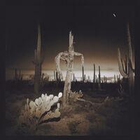 Richard Misrach, 'Saguaro Cactus', 1975