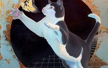 CAT AESTHETICS