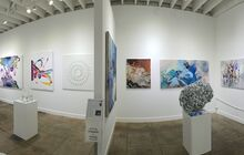 Space in a Nutshell at Artplex Gallery