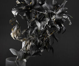 Catharine Clark Gallery at Unseen Amsterdam 2019