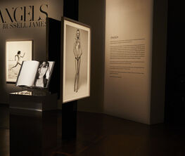 ANGELS (2018) Exhibition and Collector's Edition Preview
