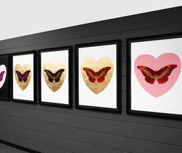 Hirst Butterflies