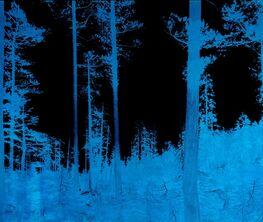 Ian Ruhter - Color Field