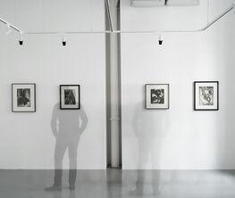 Karol Hiller. Heliographs 1931-1939