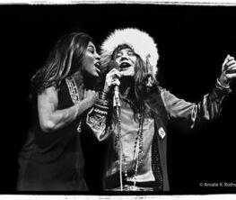 Amalie R. Rothschild: Rock Icons & Images