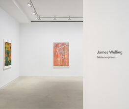 James Welling: Metamorphosis