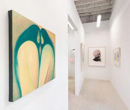 Patel Brown at Art Toronto 2020