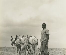One Third of a Nation: The Photographs of the Farm Security Administration