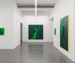 Daniel Lergon: Sob Verde