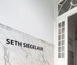 Selected Endeavors by Seth Siegelaub