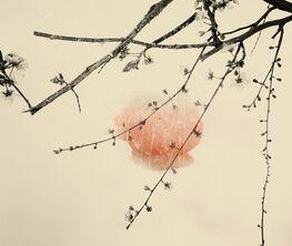 Mukayu - Paul Cupido