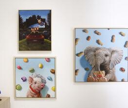 Lucia Heffernan - Paintings