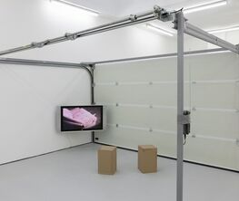 Supportico Lopez at Art Basel 2016