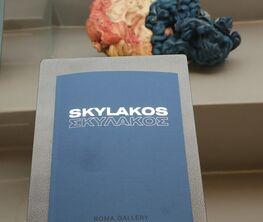 "Vassilis Skylakos : ""Here, there and everywhere"""