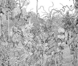 Carol Brown Goldberg: Entanglement