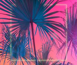 Neon Landscapes